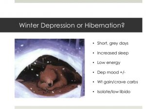 seasonal-affective-disorder-or-why-you-get-the-winter-blues-4-638